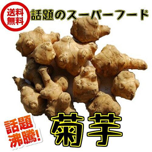 無農薬栽培 洗い(赤菊芋 約5kg 常温)サイズ込 イヌリン 菊芋 生 きくいも 青果 キクイモ