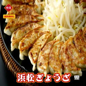 (浜松ぎょうざ 120個)冷凍餃子 餃子 ぎょうざ 産直 1個20g 【本島送料無料】