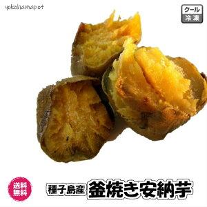 【送料無料】種子島産の安納芋の石窯焼き 焼き芋 500g×3袋 蜜芋 産直