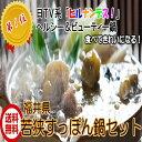 【送料無料】若狭 (すっぽん鍋セット 2人前) ヘルシー ビューティ コラーゲン 産直
