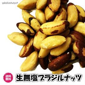 (ブラジルナッツ 500g)生ナッツ ブラジル産 無塩・無添加 ナッツ 送料無料