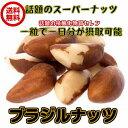 (ブラジルナッツ 240g/80g×3パック)非加熱 ブラジル産 無塩・無添加 ナッツ 全国送料無料 生ナッツ