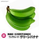 【送料無料】グリーンバナナ 11kg大箱(バナナ 11kg)レジスタントスターチ ダイエット フェアトレード 無農薬 …