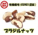(オーガニック ブラジルナッツ 100g×2袋 アリサン)非加熱 ブラジル産 無塩・無添加 ナッツ 全国送料無料 生ナッツ