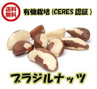 (オーガニックブラジルナッツ100g×2袋アリサン)非加熱ブラジル産無塩・無添加ナッツ全国送料無料生ナッツ