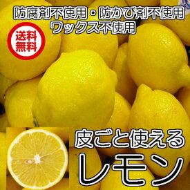 皮ごと使える(防ばい剤不使用 輸入レモン サイズ込 10kg 約60〜110個 クール )防腐剤・ワックス不使用レモン  レモン サイズ込 防ばい剤不使用レモン 青果