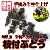 【送料無料】無添加(枝付ぶどう160g80g×2パック)ドライフルーツ砂糖不使用レーズン砂糖不使用