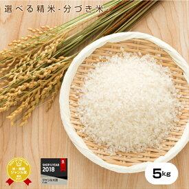 【元年産】熊本県産コシヒカリ白米から玄米選べる精米!玄米5kg【分づき精米対応】 【送料無料】/お米/熊本県産/こめたつ こしひかり