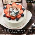 写真プリントケーキ生クリーム4号【送料無料】