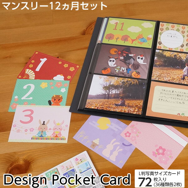 【20時からP5倍】アルバム マンスリー デザインポケットカード IT-DPCM-L #205#
