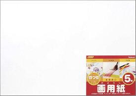 ナカバヤシ 画用紙 四ツ切 SD-カー102