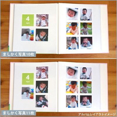 大判の集合写真・2L判サイズを収納できます