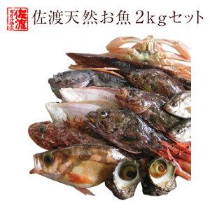 【送料無料 】 佐渡天然お魚セット約二キロ入って¥3780 とにかくいろんな魚が入ってます!!