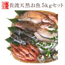 【送料無料 】 ボリュームタップリ佐渡天然お魚セット約5キロ入って¥5280 とにかくいろんな魚が入ってます!!