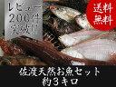 【送料無料 】 佐渡天然お魚セット約三キロ入って¥3780 とにかくいろんな魚が入ってます!!