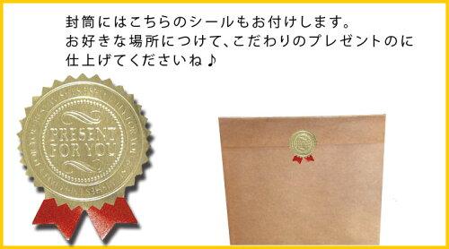 『【ピンク】ドイツのフキン☆BLITZ専用★ギフト封筒+シール付セット』レギュラーサイズのブリッツが6枚まで入る大きさです。【ブリッツとはセットになっていません】【贈り物プレゼント】北欧ヨーロッパ製