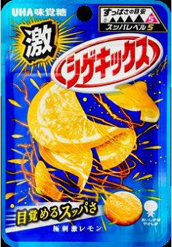 【代引き不可】【DM便でお届け】【同梱不可】送料無料味覚糖すっぱレベル5激シゲキックス極刺激レモン20g×10袋お試し