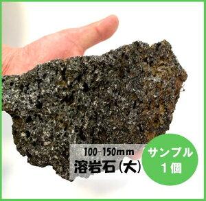 【サンプル】溶岩石 (高濾過) ブラック 10−15cm