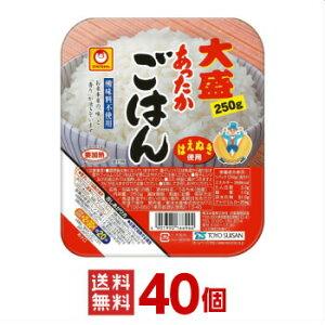 【東洋水産】(マルちゃん) あったかごはん 大盛 250g 40個(10個入×4ケース分)【送料無料(※沖縄除く)】【沖縄配達休止中です】