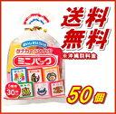【送料無料】タナカのふりかけ ミニパック 2ケース(30P入×50個)【タナカ】