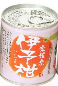 愛媛産柑橘缶詰 伊予柑シラップづけ 5号缶 295g×12個セット 果物 みかん 缶詰 フルーツ 国産 いよかん フルーツ缶詰