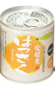 愛媛産柑橘缶詰 はっさく缶シラップづけ 5号缶 295g×6個セット 果物 みかん 缶詰 フルーツ はっさく 国産 フルーツ缶詰