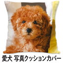 愛犬 クッションカバー 両面 写真プリント いぬ プリント おしゃれ ペット 犬 写真 プリント オリジナル オリジナルク…