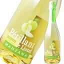 ペティアン・ド・リステル 青リンゴ 750ml※12本まで1個口で発送可能※お届けするワインのヴィンテージが画像と異なる場合がございます…