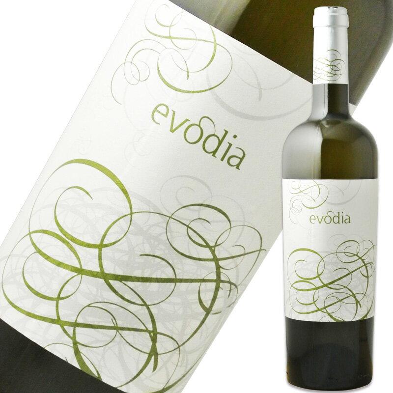 ボデガス・サン・アレハンドロ エヴォディア 白 750ml※12本まで1個口で発送可能※お届けするワインのヴィンテージが画像と異なる場合がございます。※ヴィンテージについては、ご注文前にお問い合わせ下さい。