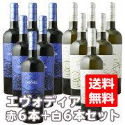 送料無料セット日酒販エヴォディア750ml白12本(1ケース)エボディアevodia赤ワインホワイトワインコスパ重視辛口