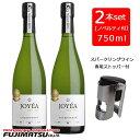 【泡ワイン専用ストッパー付き】【2本セット】ジョエア (JOYEA) オーガニック スパークリング シャルドネ 750ml ×2本…