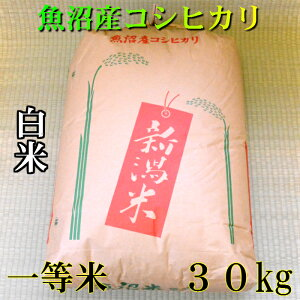 【一等米】 令和 元年産 新潟 魚沼産 コシヒカリ 30kg(30キロ) 令和元年 魚沼産コシヒカリ 魚沼産こしひかり 魚沼コシヒカリ 白米 精米 美味しい お米 おいしいお米 美味しい米 おいしい米 ご