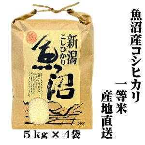 『新米 一等米』 令和 2年産 新潟 魚沼産 コシヒカリ 5kg×4 20kg(20キロ) 魚沼産コシヒカリ 魚沼産こしひかり 魚沼コシヒカリ 白米 精米 美味しい お米 おいしいお米 美味しい米 おいしい米 新潟