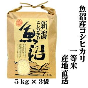 『新米 一等米』 令和 2年産 新潟 魚沼産 コシヒカリ 5kg×3 15kg(15キロ) 魚沼産コシヒカリ 魚沼産こしひかり 魚沼コシヒカリ 白米 精米 美味しい お米 おいしいお米 美味しい米 おいしい米 ご当