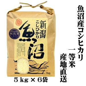 『一等米』 令和元年産 新潟 魚沼産 コシヒカリ 5kg×6 30kg(30キロ) 令和元年 魚沼産コシヒカリ 魚沼産こしひかり 魚沼コシヒカリ 無洗米 美味しい お米 おいしいお米 美味しい米 おいしい米 美