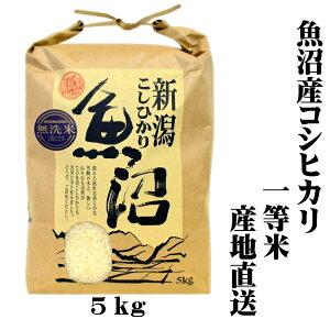 『新米 一等米』 令和 2年産 産地直送 新潟 魚沼産 コシヒカリ 5kg(5キロ) 魚沼産コシヒカリ 魚沼産こしひかり 魚沼コシヒカリ 無洗米 美味しい お米 おいしいお米 美味しい米 おいしい米 ご当