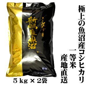 【新米 一等米】令和2年産 産地直送 新潟 魚沼産 コシヒカリ 5kg×2 10kg(10キロ) 魚沼産コシヒカリ 魚沼産こしひかり 魚沼コシヒカリ 白米 精米 美味しい お米 おいしいお米 美味しい米 おいし