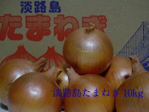 淡路島産たまねぎ 10kg中・晩生品種 おまかせサイズ