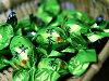 纯绿茶 tiramischoco (价值 500 克)