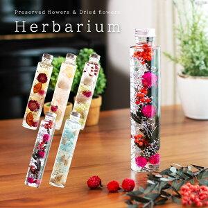 ハーバリウム ギフト 植物標本 プリザーブドフラワー ドライフラワー 花 結婚式 結婚祝い 誕生日 記念日 退職祝い おしゃれ 可愛い 円柱 ボトル ロング 女性 男性 プレゼント