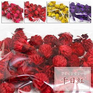ドライフラワー 千日紅 センニチコウ 約40輪入り ハーバリウム におすすめ 花材 ピンク レッド 赤 イエロー 黄色 パープル 紫