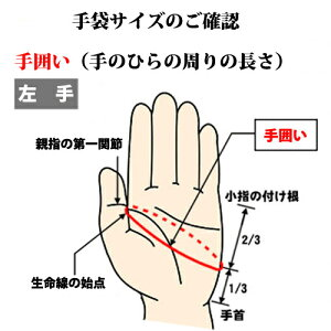 【ミズノ/mizuno】グローバルエリートZeroSpace(左手用)【野球・ソフト】高校野球対応守備用走塁用手袋グラブグローブ(1EJED180)