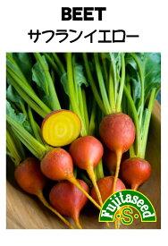 【藤田種子】ビーツ サフランイエロー野菜のタネ