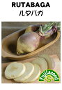 【藤田種子】ルタバガ野菜のタネ