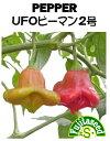 【藤田種子】UFOピーマン2号野菜のタネ
