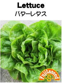 【藤田種子】レタス バターレタス野菜のタネ
