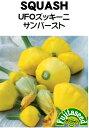 【藤田種子】UFOズッキーニサンバースト(黄)野菜のタネ