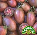 【藤田種子】紫トマト 野菜のタネ