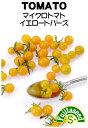 【藤田種子】マイクロトマトイエロートパーズ野菜のタネ