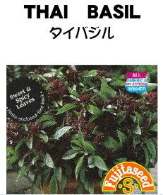 【藤田種子】タイバジルハーブ種